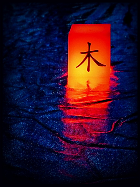 kínai jel fa uszik a vizen - szendreigabor.hu
