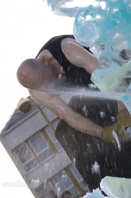 Víz, zene, virág fesztivál Tatán képek  - Szendrei Gábor