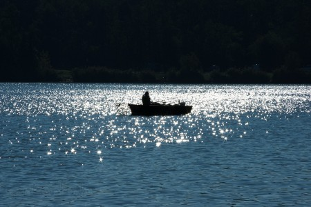 Madárgyűrűzés a Naplás-tónál - fotó: Szendrei Gábor