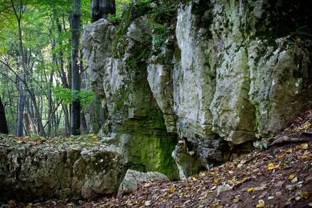 Tatabánya 20 (30) km túrabeszámoló - fotó: Szendrei Gábor
