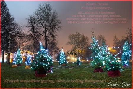 Karácsonyi képeslap 2012 - fotó: Szendrei Gábor