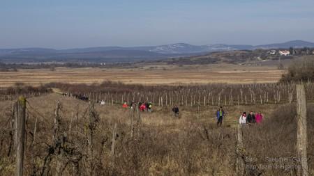 Téli Tihany 20 km - fotó: Szendrei Gábor