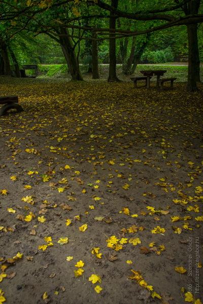 Őszi túra a Spartacus ösvényen - fotó: Szendrei Gábor