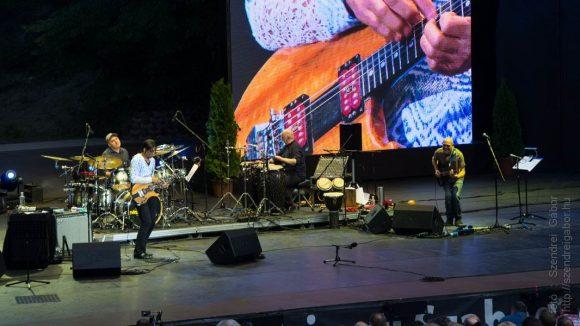 Stanley Jordan koncert Margitsziget szabadtéri színpad - fotó: Szendrei Gábor